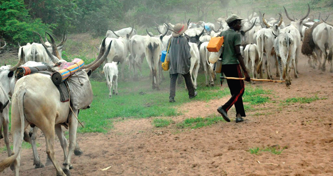 Benue: Fulani herdsmen kill three persons in midnight attack