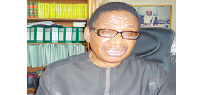 Sagay: Buhari'll fund 2019 poll regardless of NASS' approval