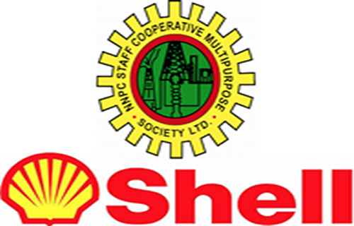 Shell rakes in $4bn from Nigeria in one year