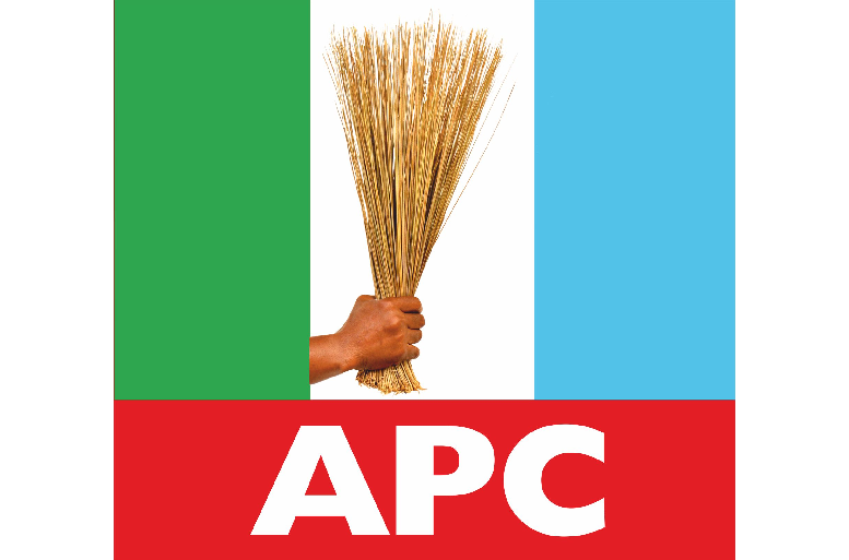 APC leaders sponsored youths protest against me, Tallen alleges