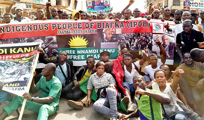 Igbo Professionals in Diaspora lauds Operation Python Dance, urges probe of IPOB
