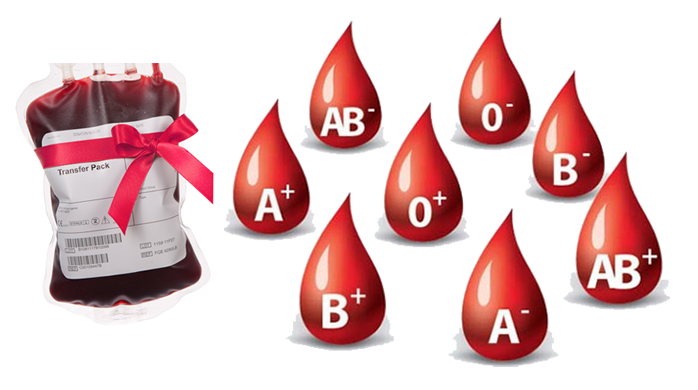 FG: No blood sample should leave the country