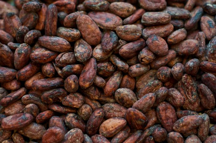 Farmers' strike: Implications for Nigeria's cocoa exports