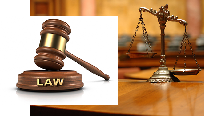 Court nullifies Rivers' APC primaries, disqualifies candidates