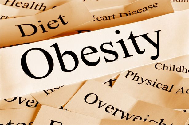 Scientists link stress to obesity