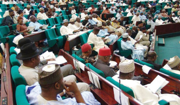 Reps walk out Niger Delta Minister from budget defence