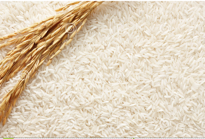 10,000 farmers will benefit from N9bn Dangote/Oyo rice production agreement – Ajimobi