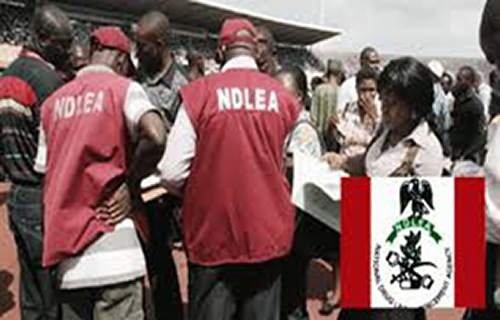 "NDLEA clamps down on users of ""skrushy"" in Oyo"