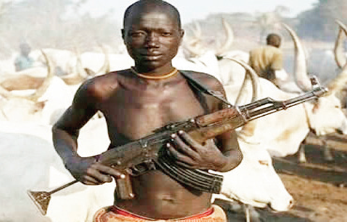 Herdsmen in army uniforms kill another 43 Benue farmers