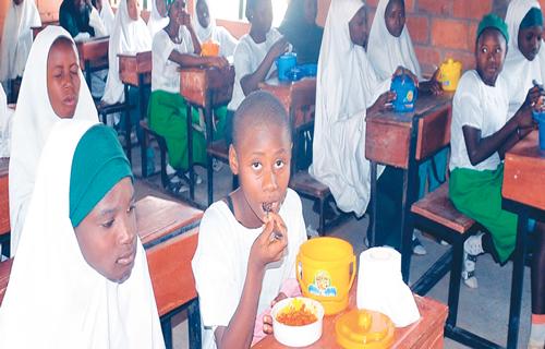 School feeding programme: How far can FG go?