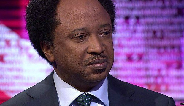 JUST IN: Shehu Sani dumps from APC