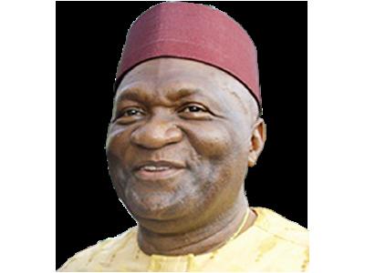 2019: INEC plotting to disenfranchise Ndigbo – Ohanaeze