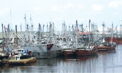 Govt's policies hinder blue economy's development