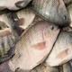 Eating fish help keep you healthy