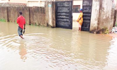 Flood: Schools, houses, farms submerged in Delta, Kwara