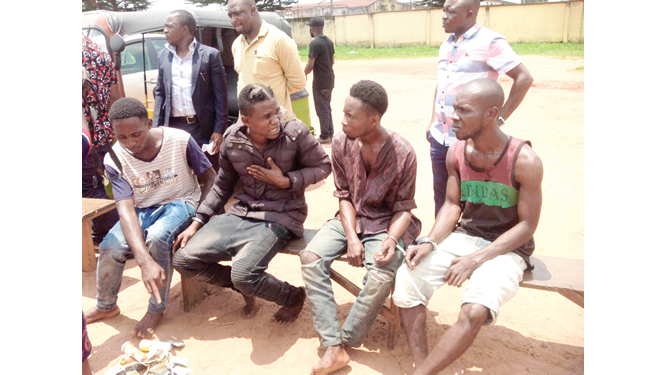Forgive us for raping our victim, robbers beg police