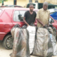 Two merchants arrested with seven bags of Indian hemp