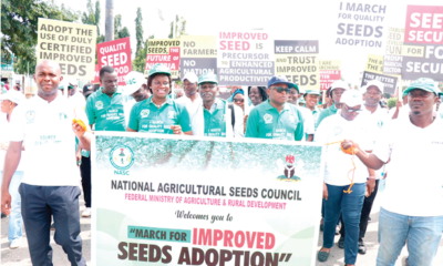 A march against fake seeds