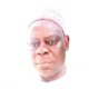 Why ACF can't back Buhari, Atiku for now, by Sani