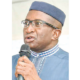 Ndoma-Egba: Direct primaries confer party ownership to members